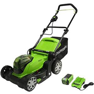 Greenworks G24