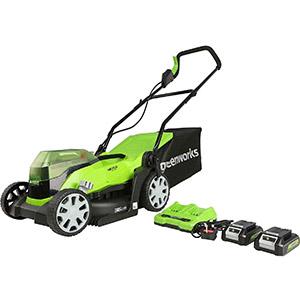 Greenworks G24 X2