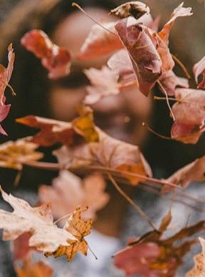 Mantenimiento del césped en otoño